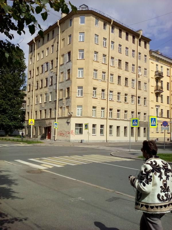 Опочинина ул., д.17, Василеостровский р-н